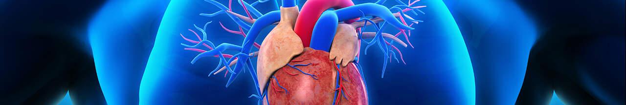 heartPrevention