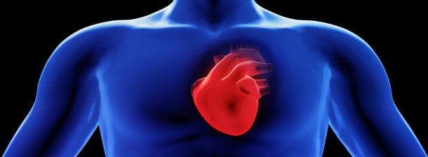 stock_heart_